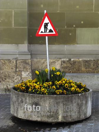 http://www.romanoriedo.ch/files/gimgs/16_blumenbeet-arbeiter-s.jpg